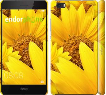 """для Huawei Ascend P8 Lite """"Подсолнухи"""" - интернет-магазин чехлов endorphone.com.ua"""