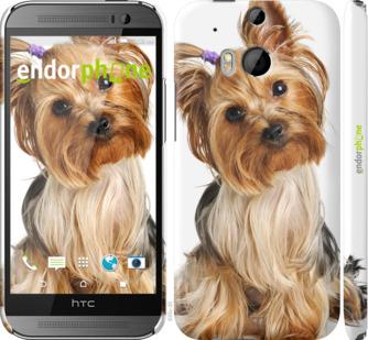 """Чехол для HTC One M8 dual sim """"Йоркширский терьер с хвостиком"""" - интернет-магазин чехлов endorphone.com.ua"""