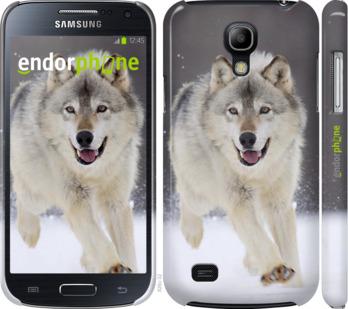 """Чехол для Samsung Galaxy S4 mini Duos GT i9192 """"Бегущий волк"""" - интернет-магазин чехлов endorphone.com.ua"""
