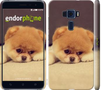 "Чехол для Asus Zenfone 3 ZE520KL ""Boo 2"" - интернет-магазин чехлов endorphone.com.ua"