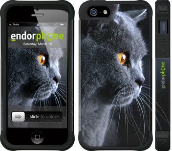 """Чехол для телефона """"Красивый кот"""" - интернет-магазин чехлов endorphone.com.ua"""