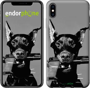 "Чехол для iPhone XS Max ""Доберман"" - интернет-магазин чехлов endorphone.com.ua"