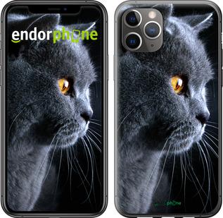 """TPU черный чехол для iPhone 11 Pro Max """"Красивый кот"""" - интернет-магазин чехлов endorphone.com.ua"""