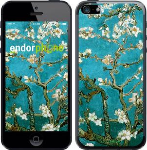 "Чехол для iPhone SE ""Винсент Ван Гог. Сакура"" - интернет-магазин чехлов endorphone.com.ua"