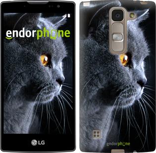 """Силиконовый чехол для LG Spirit Dual H422 """"Красивый кот"""" - интернет-магазин чехлов endorphone.com.ua"""