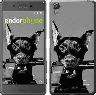 "Чехол для Sony Xperia X F5122 ""Доберман"" - интернет-магазин чехлов endorphone.com.ua"