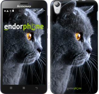 """TPU черный чехол для Lenovo S850 """"Красивый кот"""" - интернет-магазин чехлов endorphone.com.ua"""