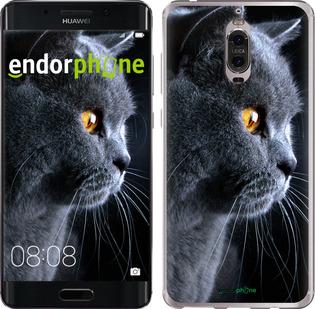 """Силиконовый чехол для Huawei Mate 9 Pro """"Красивый кот"""" - интернет-магазин чехлов endorphone.com.ua"""