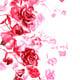"""Чехол для Huawei P9 """"Нарисованные розы"""" - интернет-магазин чехлов endorphone.com.ua"""