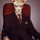 """Гибридный чехол для iPhone 5 """"Кот в костюме"""" - интернет-магазин чехлов endorphone.com.ua"""