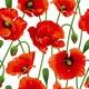 """Чехол для iPod Touch 5 """"красные маки 2"""" - интернет-магазин чехлов endorphone.com.ua"""