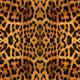 """Защитный чехол для iPhone 5 """"Шкура леопарда v2"""" - интернет-магазин чехлов endorphone.com.ua"""